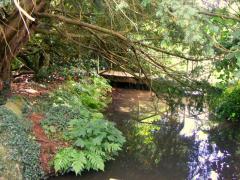 secret pool in Westerham, kent 800.JPG